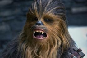 A shocked Chewbacca