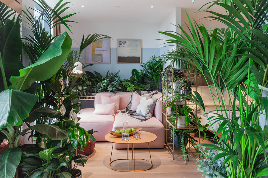 See what your room would look like full of plants! lounge area