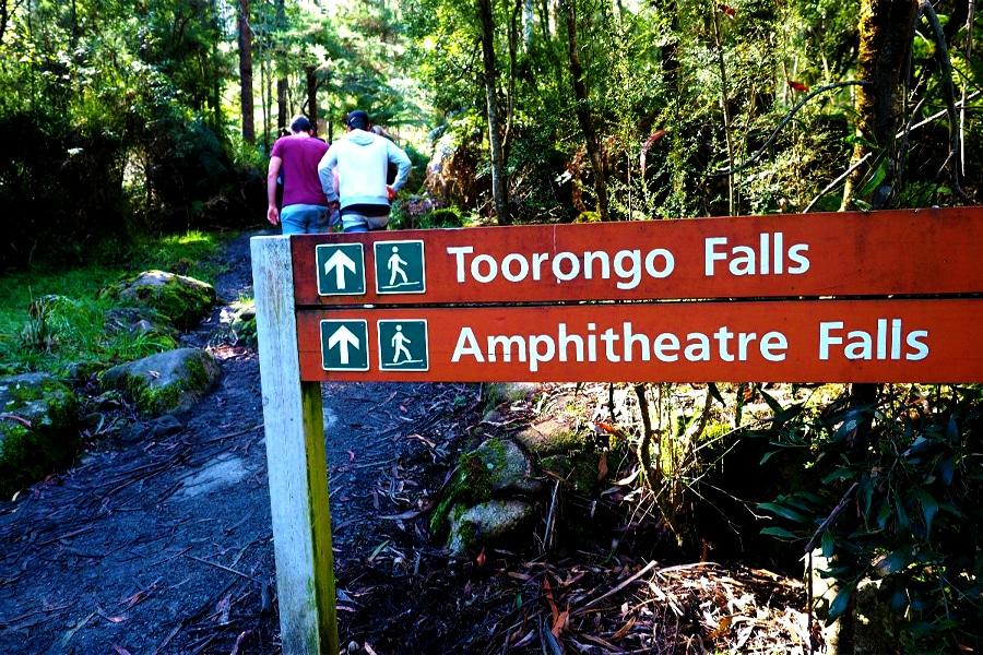 Walking Trail Noojee - Toorongo Falls