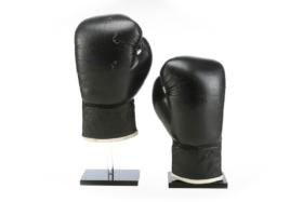 rocky boxing gloves 2