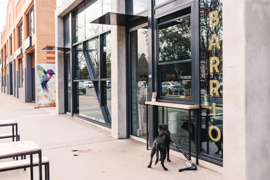 Best Coffee in Australia - Barrio Coffee Canberra