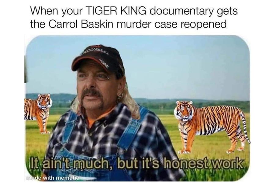 Best Memes 2020 - tiger king