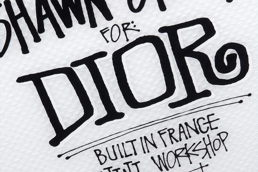 Dior x Shawn Stussy 8