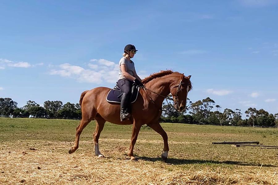 Greenvale Horse Riding Melbourne