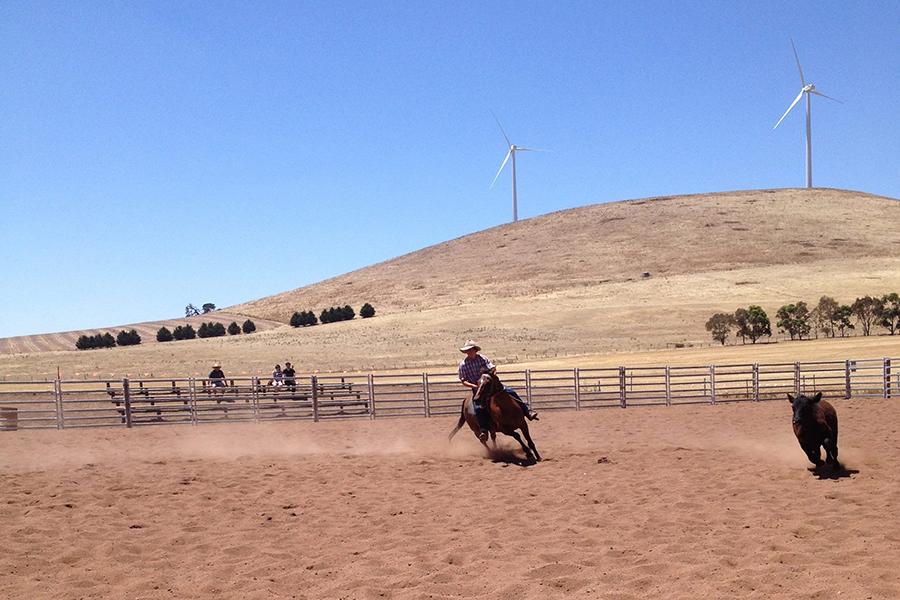 Hepburn Shire Horse Riding Melbourne