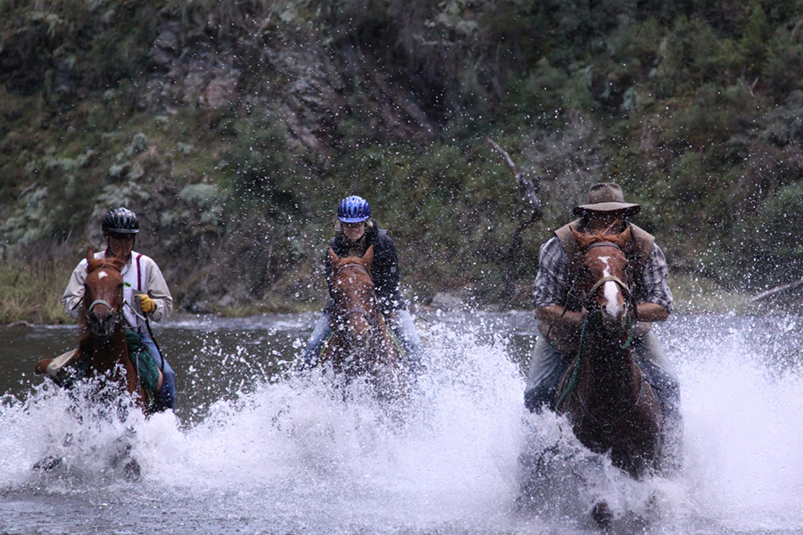 High Country Horse Riding Melbourne