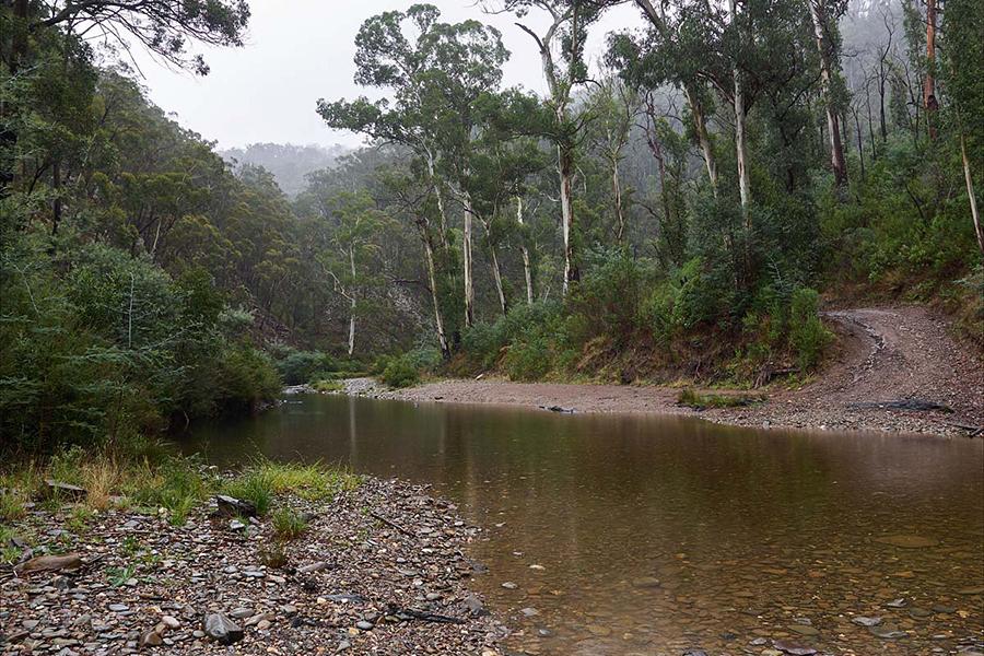 Free Camping Spots in Melbourne Aberfeldy River