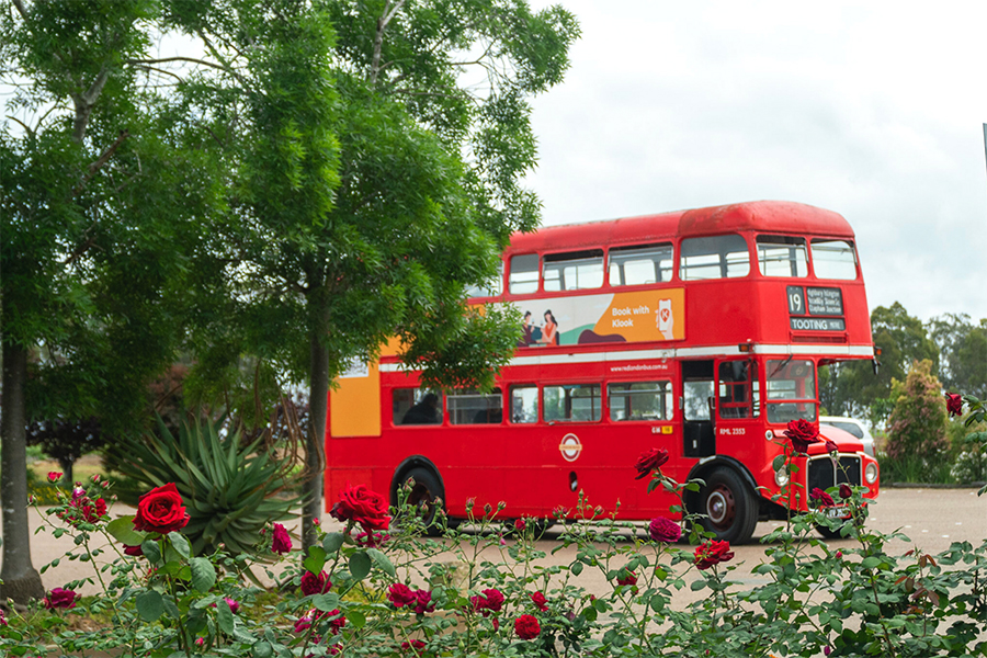 Klook Red Bus
