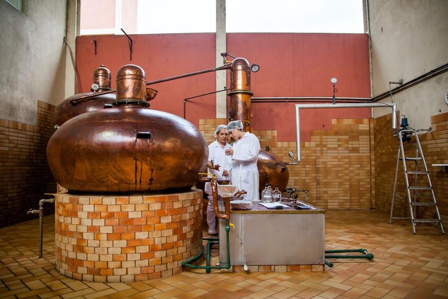 Novo Fogo Distillery