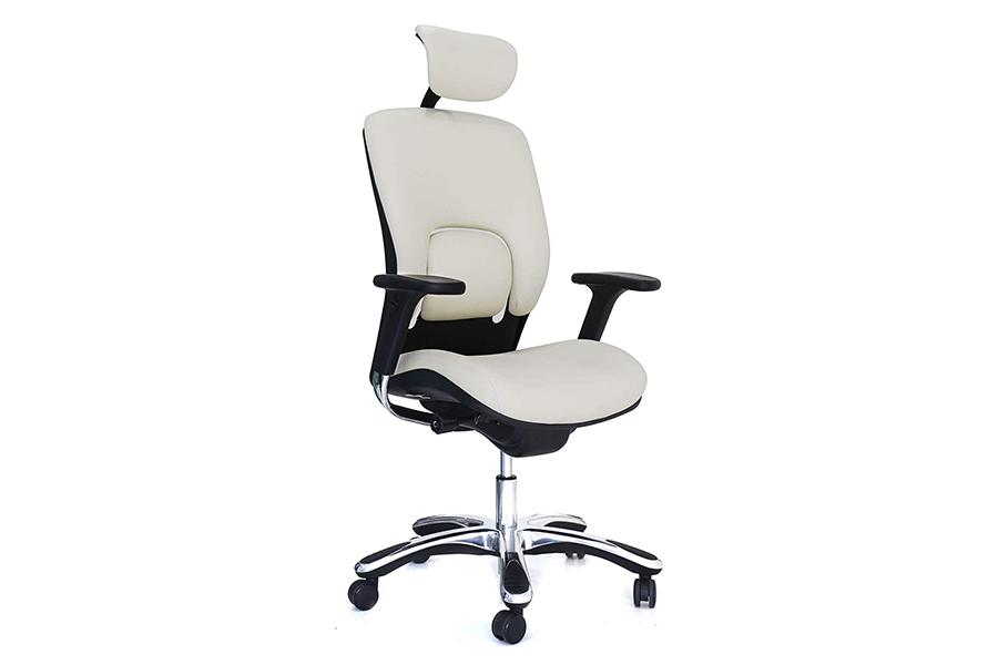 GM Seating Ergolux Ergonomic Chair