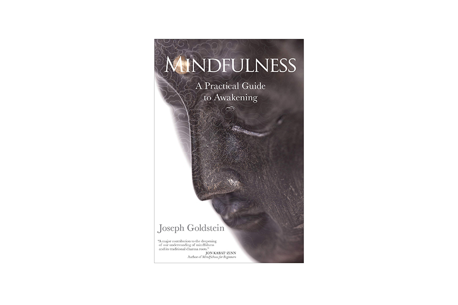 Mindfulness A Practical Guide to Awakening by Joseph Goldstein Christmas Gift Guide Corporate