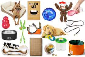 Products from 2020 Christmas Gift Guide For Your Pet(s)