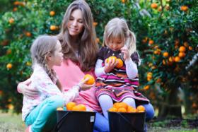 Best Family Fruit Picking Sydney