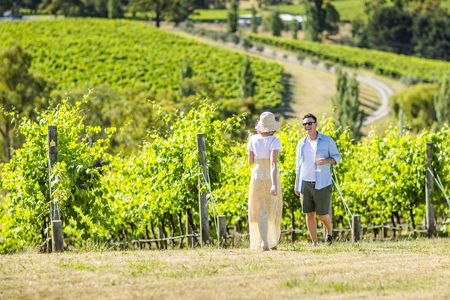 10 best day trip ideas from melbourne yarra valley wine and wildlife