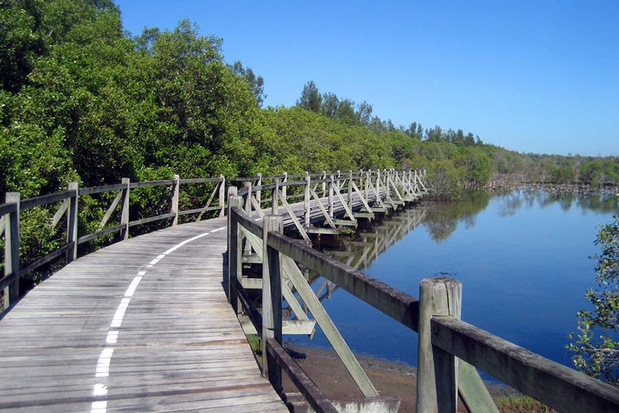 Best Walking Tracks in Brisbane Boondall Wetlands Bikeway, Boondall Wetlands