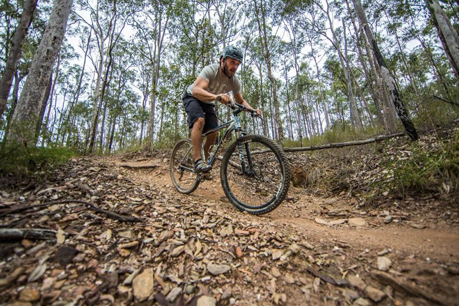 Best Walking Tracks in Brisbane Bunyaville Track, Bunyaville Regional Park