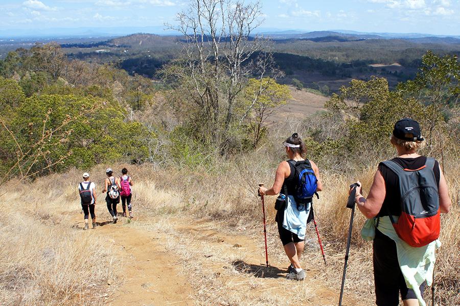 Best Walking Tracks in Brisbane Mermaid Mountain, Brisbane Forest Park