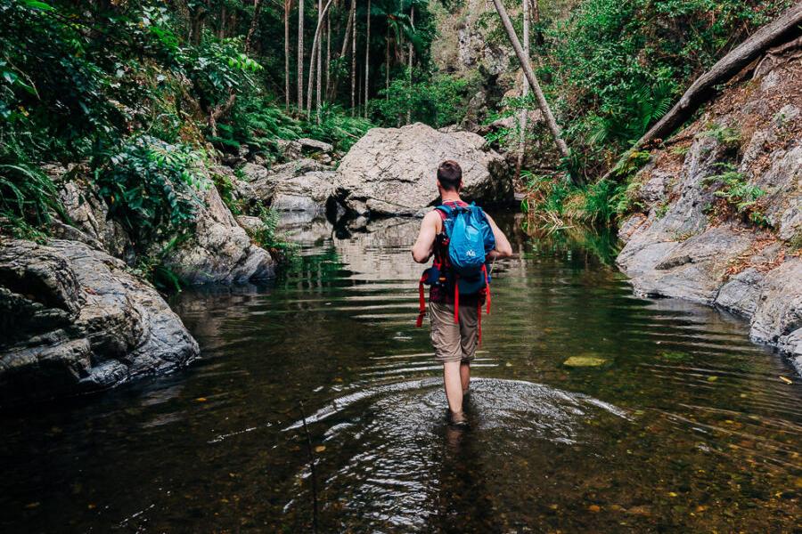 Best Walking Tracks in Brisbane Northbrook Gorges, Brisbane Forest Park
