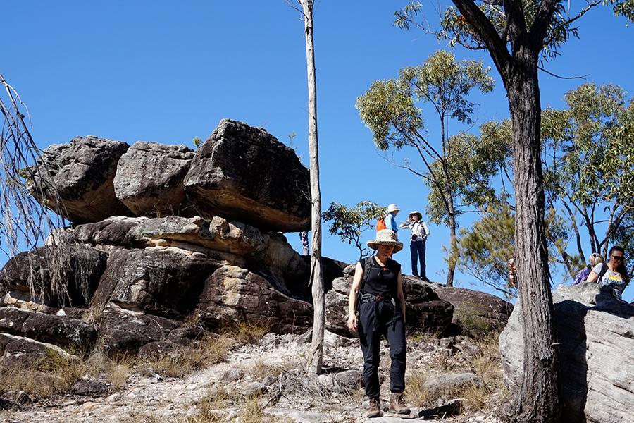 Best Walking Tracks in Brisbane Poets Rock, Karawatha Forest