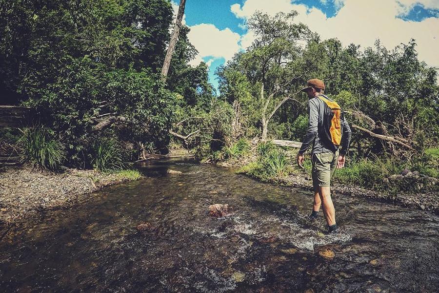 Best Camping Spots Near Brisbane Cedar Grove Camping Area