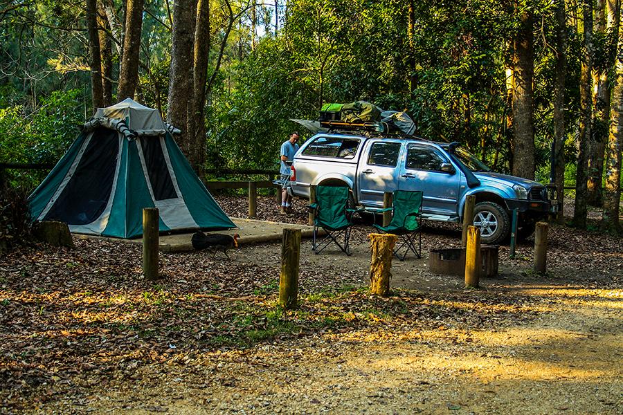 Best Camping Spots Near Brisbane Conondale National Park