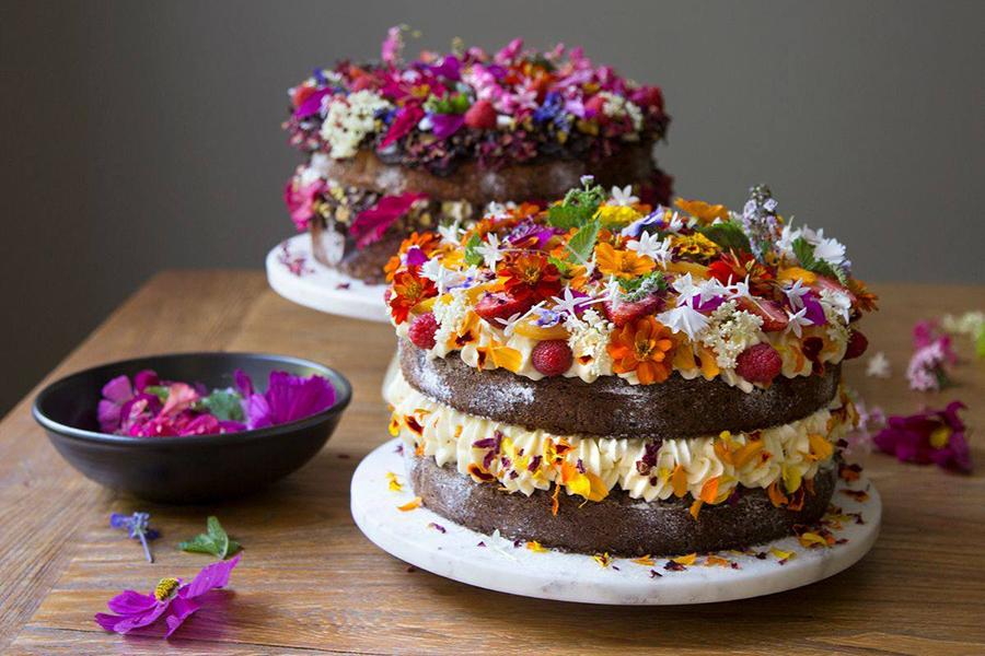 Best Cake Shops in Brisbane Wild Canary Bistro