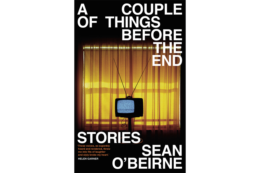 A Couple of Things Before the End- Stories by Sean O'Beirne