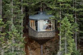 Woodnest Cabin outside look