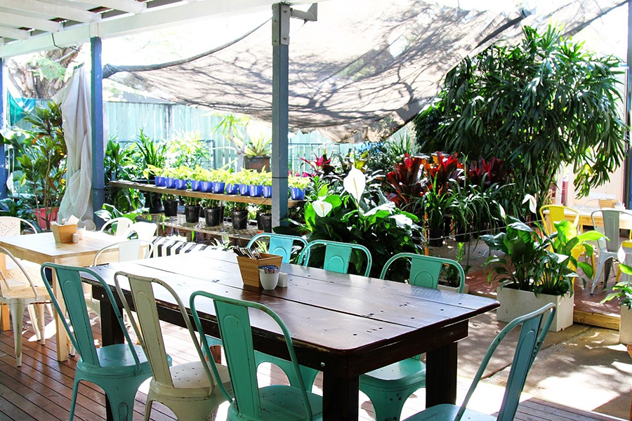 Spots for the Best Brunch in Brisbane The Smug Fig Cafe