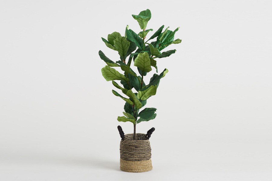 World Market Faux Fiddle-Leaf Fig Plant