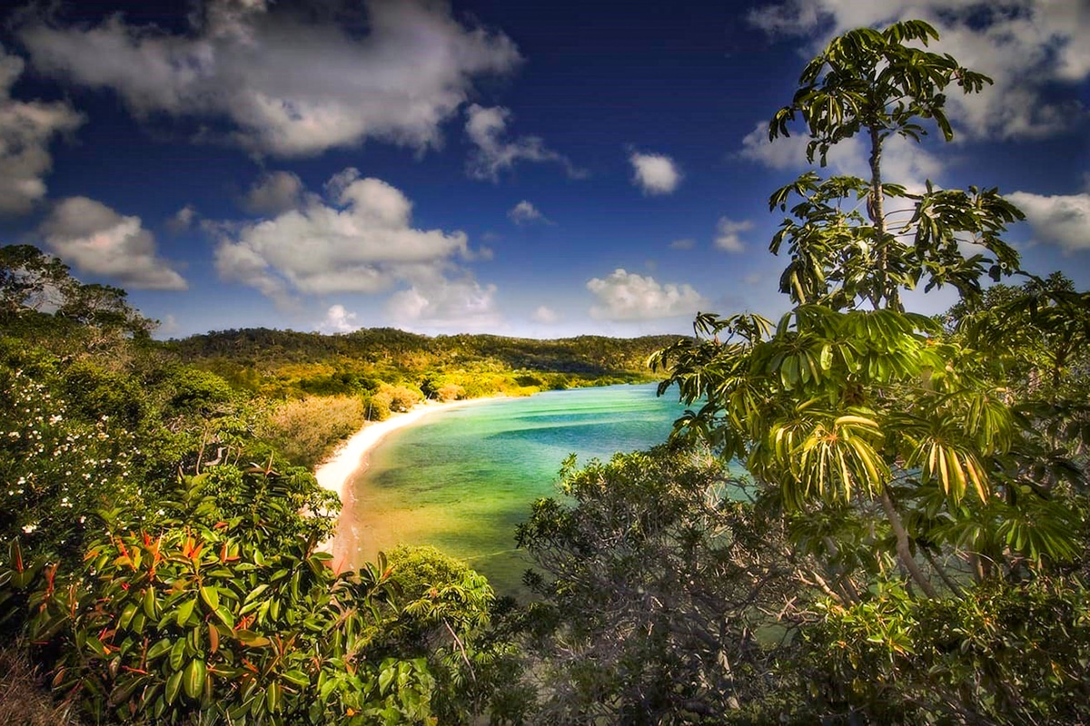 Best Beaches Near Brisbane Adams Beach