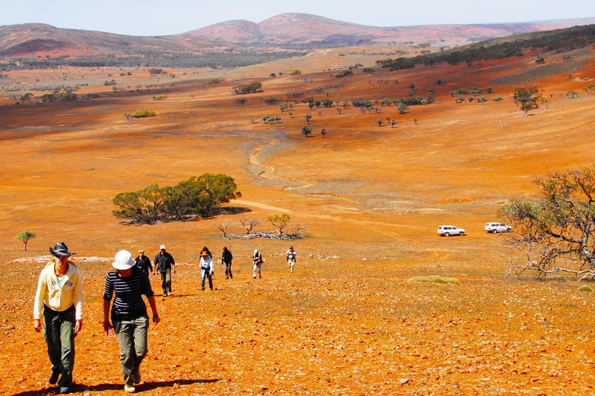 Best Glamping Spots Near Adelaide Gawler Ranges Wilderness Safaris