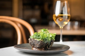 Best Restaurants in Surry Hills