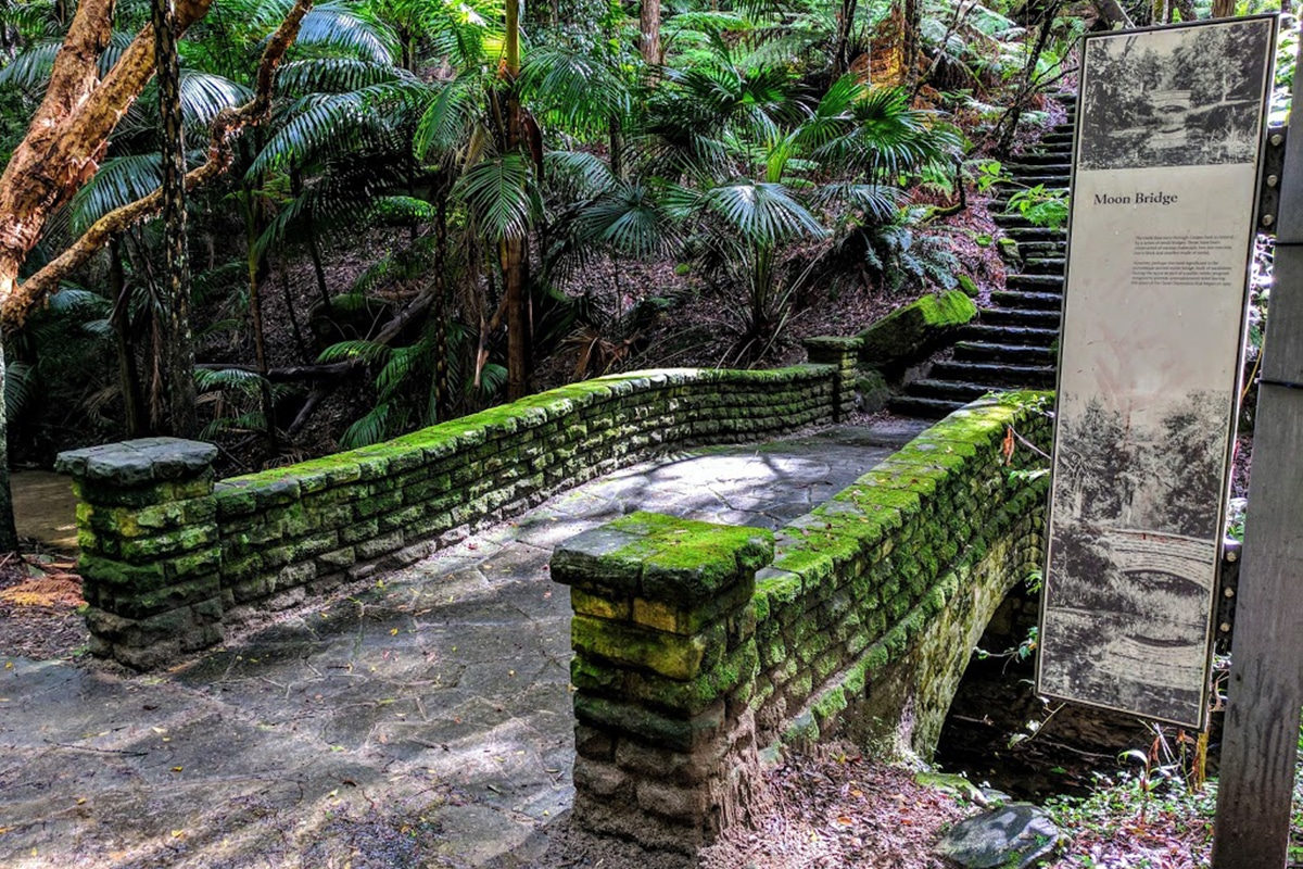 Best Views and Lookout Points in Sydney Cooper Park, Bellevue Hill