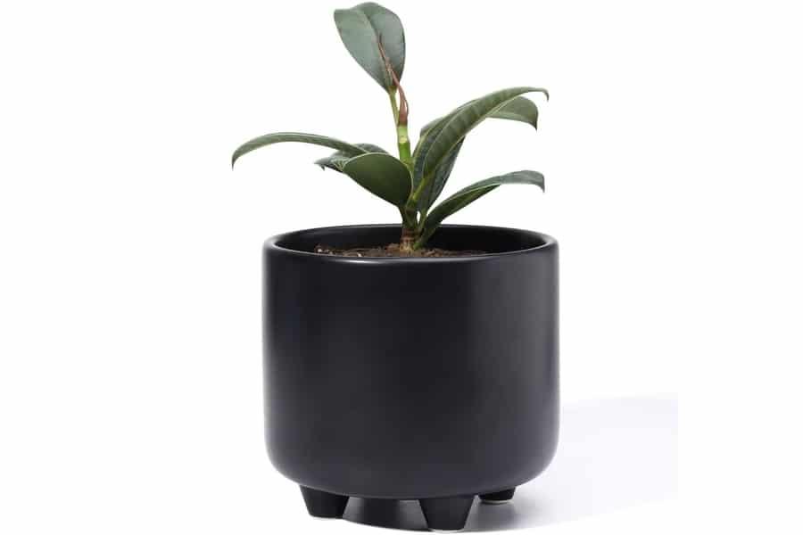 POTEY 051702 Plant Pot with Drainage Hole