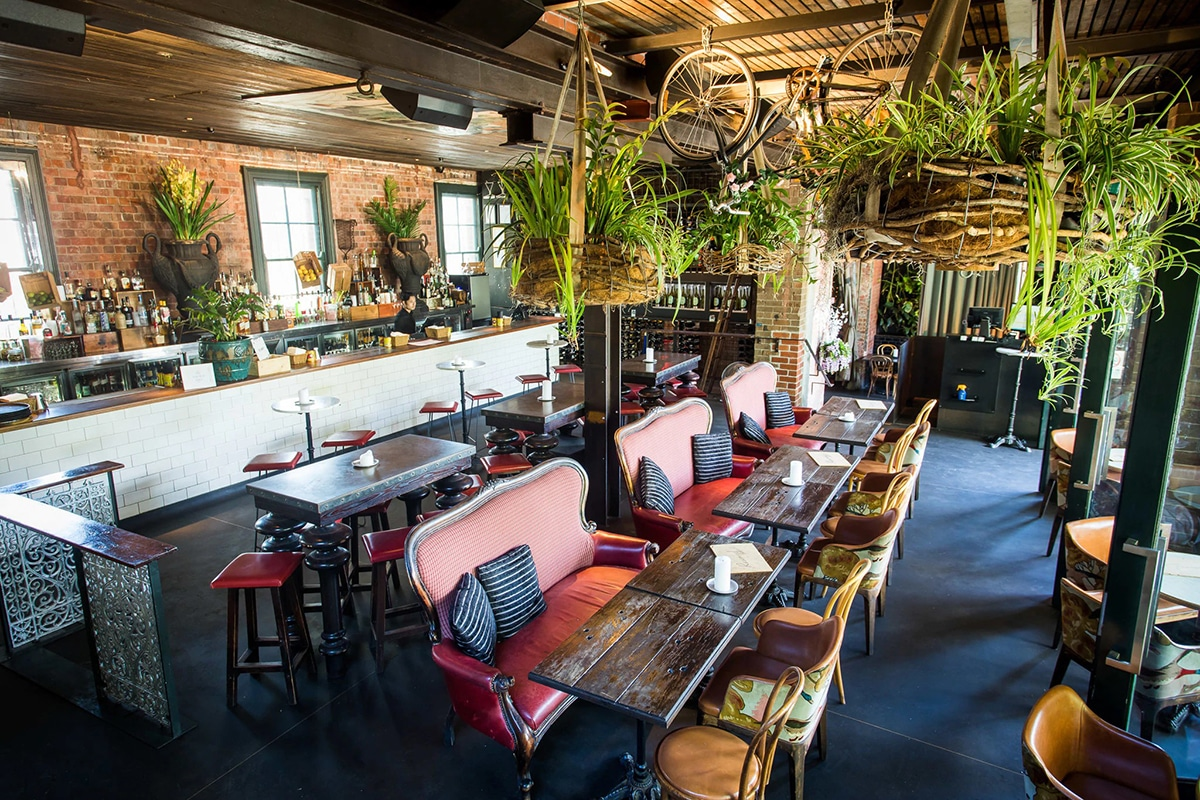 Best Surry Hills Bars to Whet Your Whistle The Winery