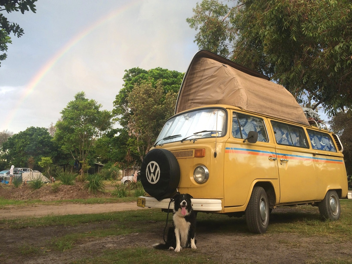 dog sitting near yellow camping car at delicate campground