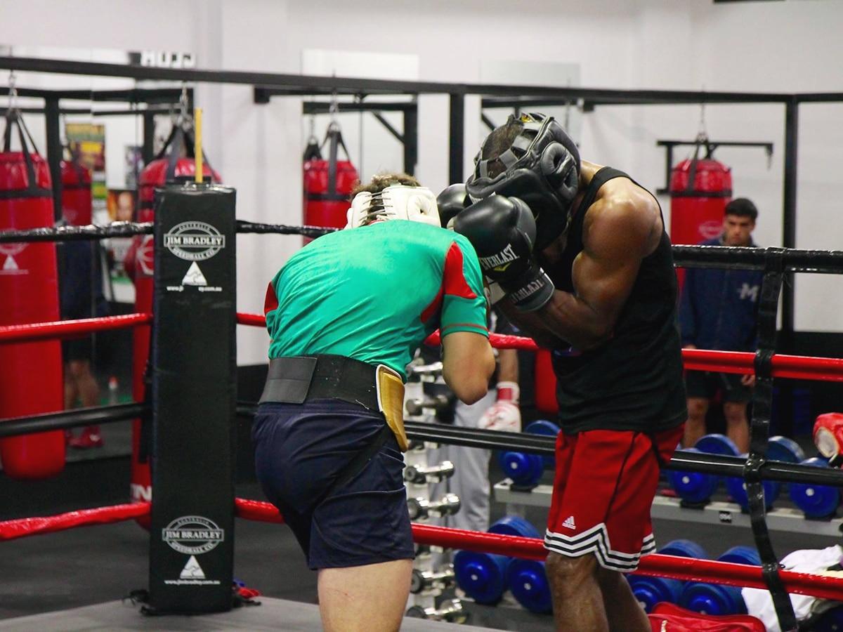 boxing training at bondi boxing club waterloo