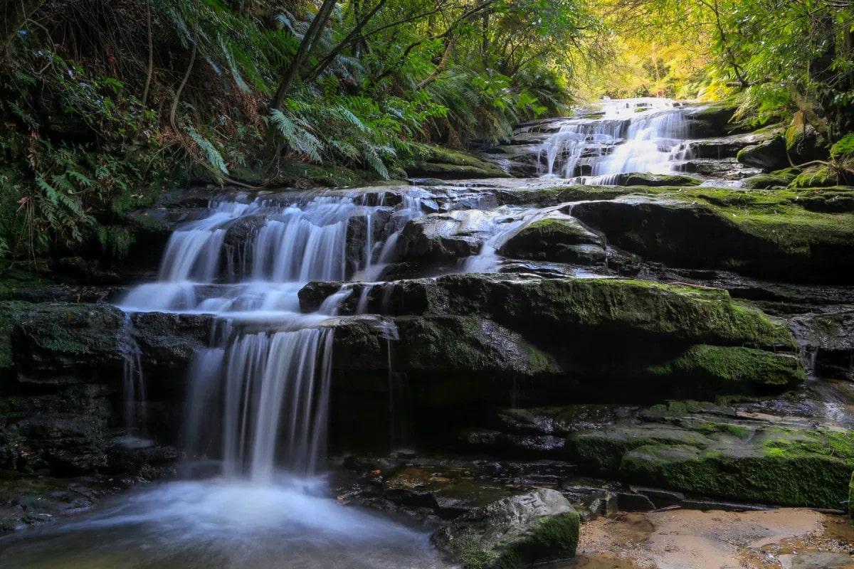 waterfall leura cascades fern bower circuit
