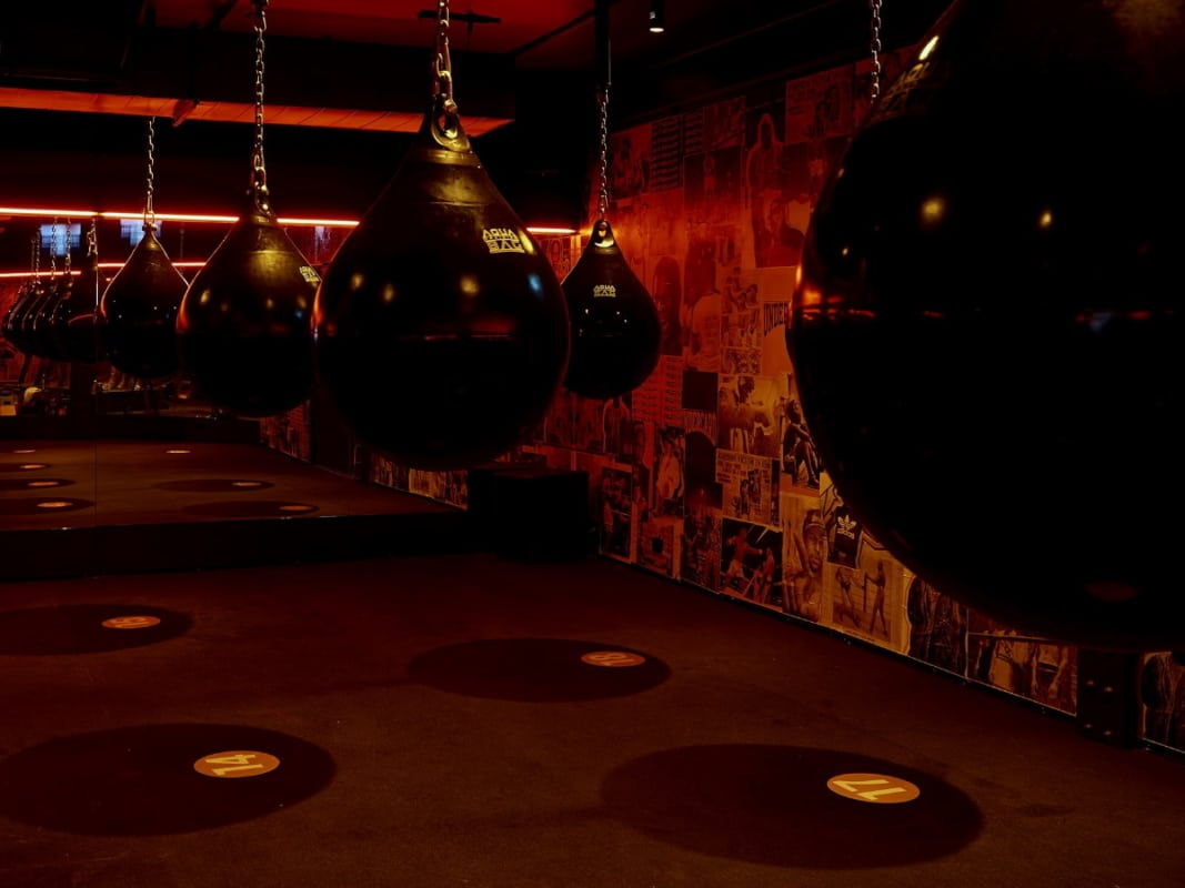 Best boxing gyms in sydney 15