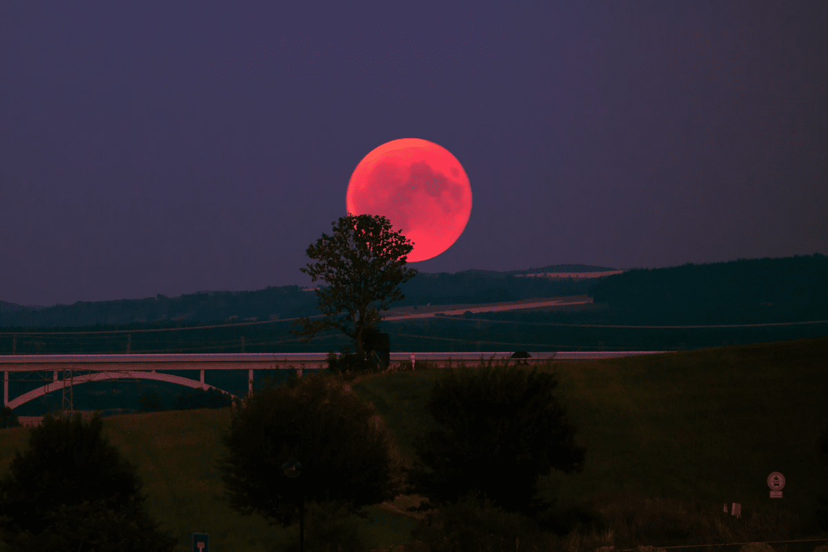 How to watch the blood moon 2021 australia 3