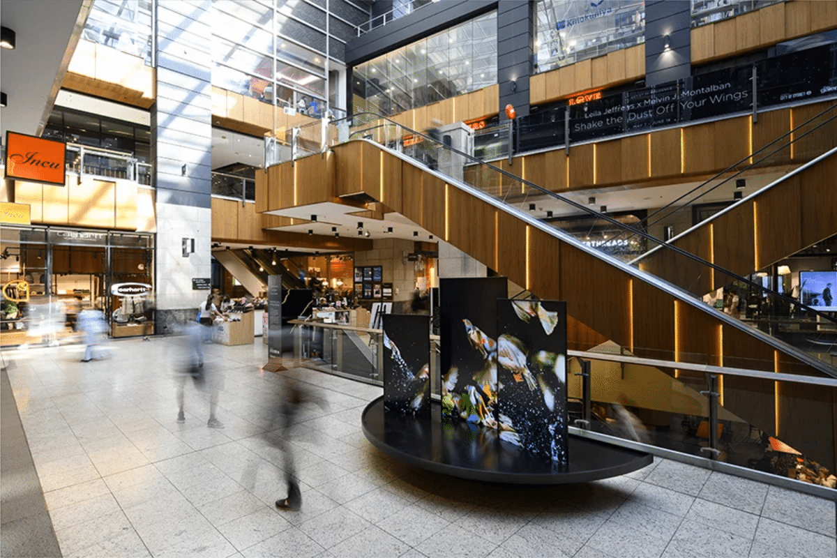 Things to do artist in residence program at the galeries