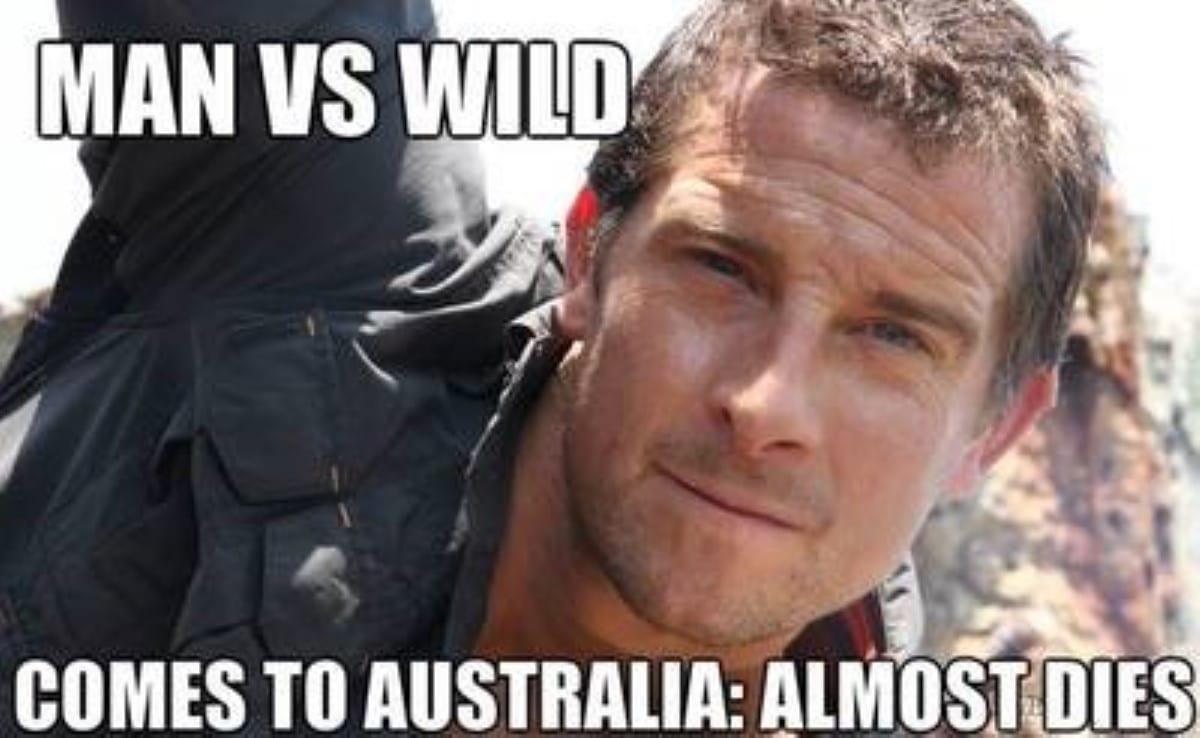 Best australian memes 188 1 1