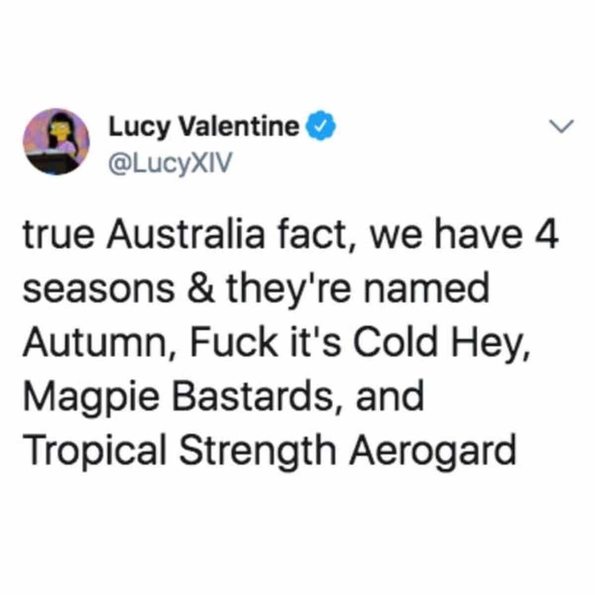Best australian memes 74 1 1