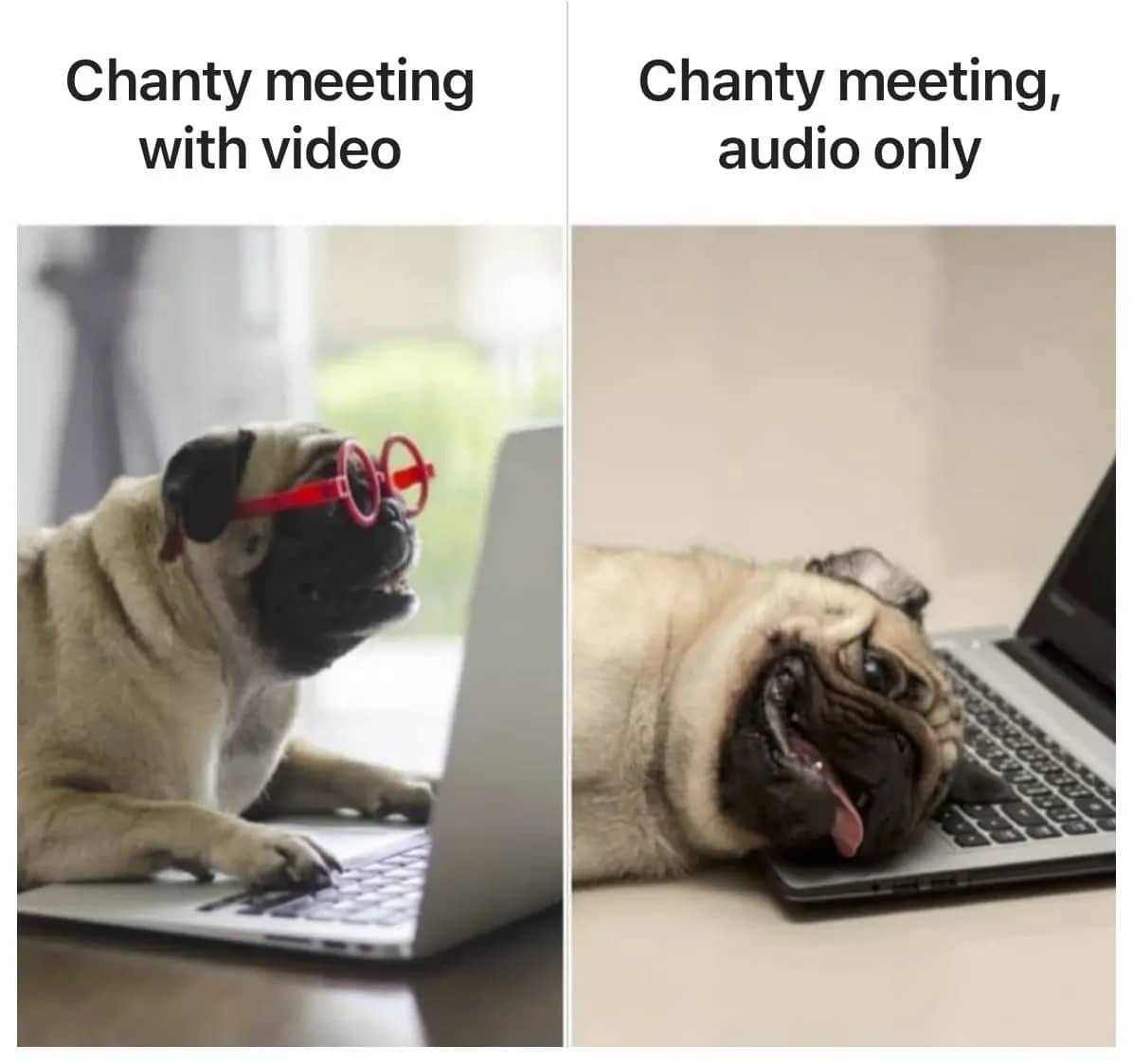 Work from home meme audio call