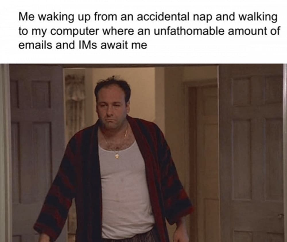 Work from home meme nap