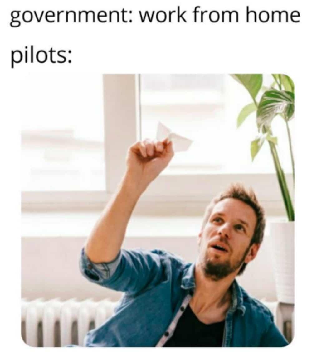 Work from home meme pilot