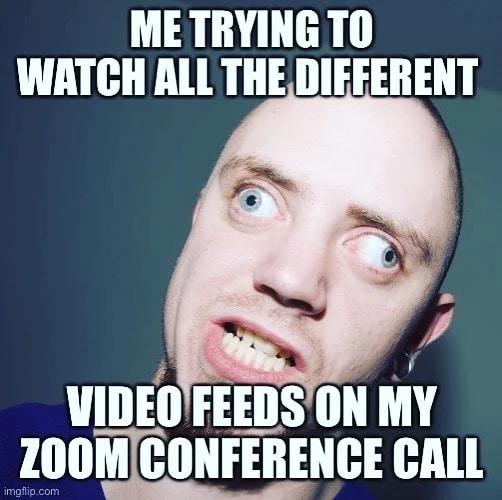 Zoom feeds wfh