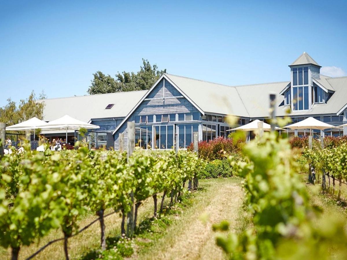 frogmore creek vineyard lookout