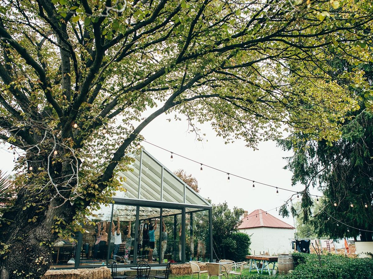 pressing matters vineyard outdoors